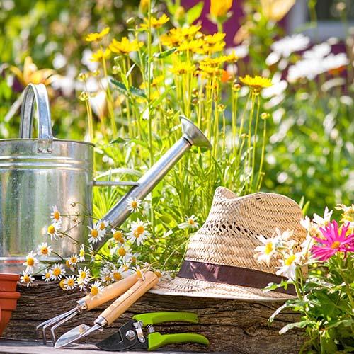 complementos jardineria